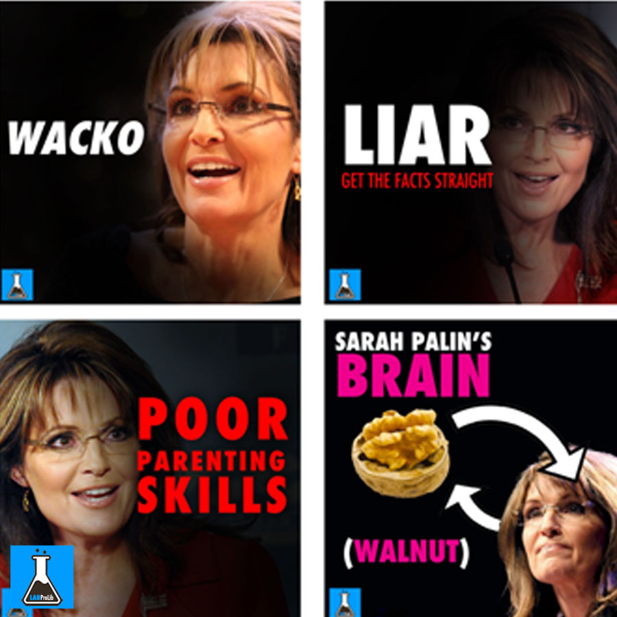 Sarah Palin Endorses Donald Trump for 2016 | Sarah Palin ...  |Sarah Palin Meme